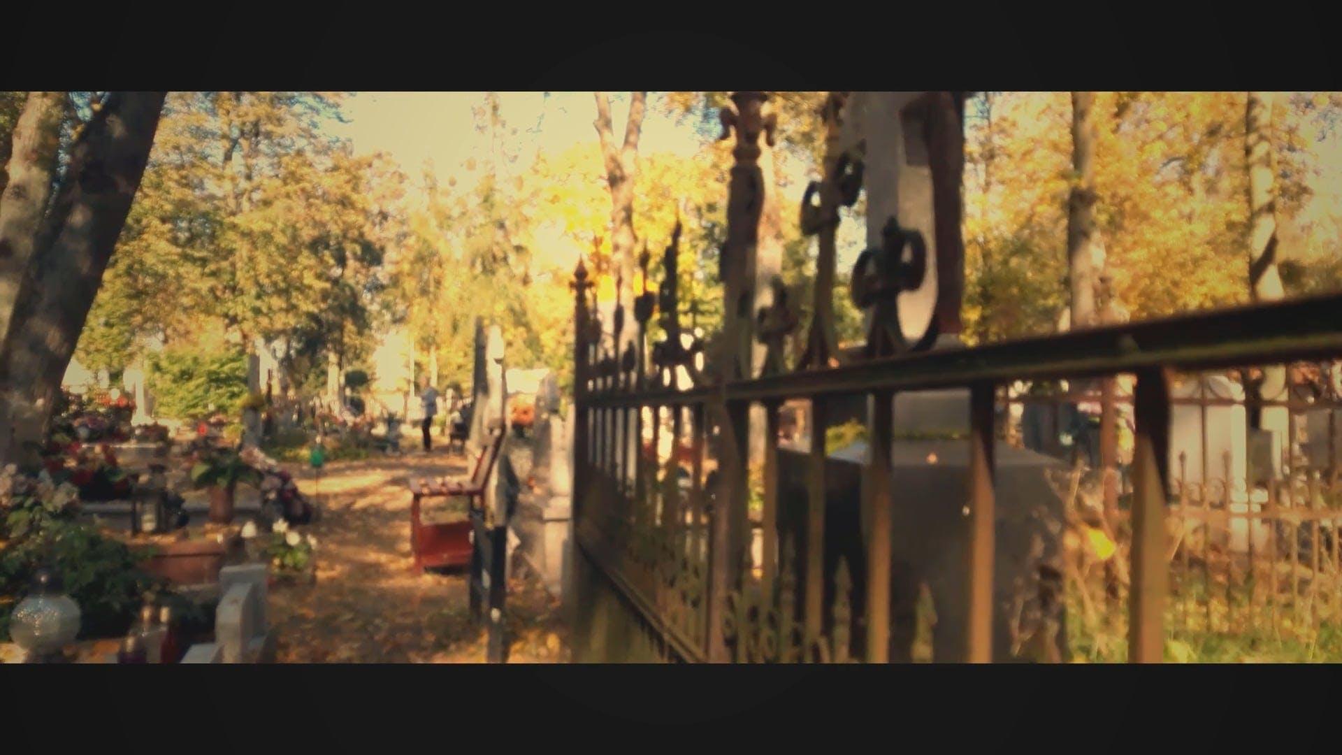 An Eerie Graveyard
