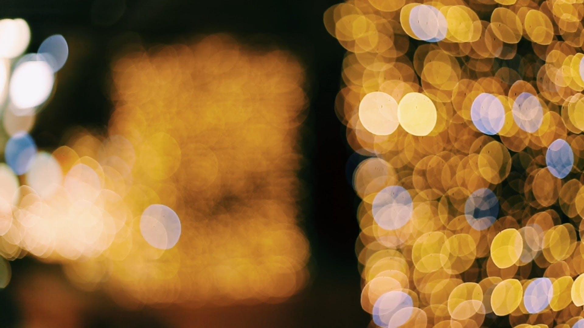Golden Yellow Twinkling Lights