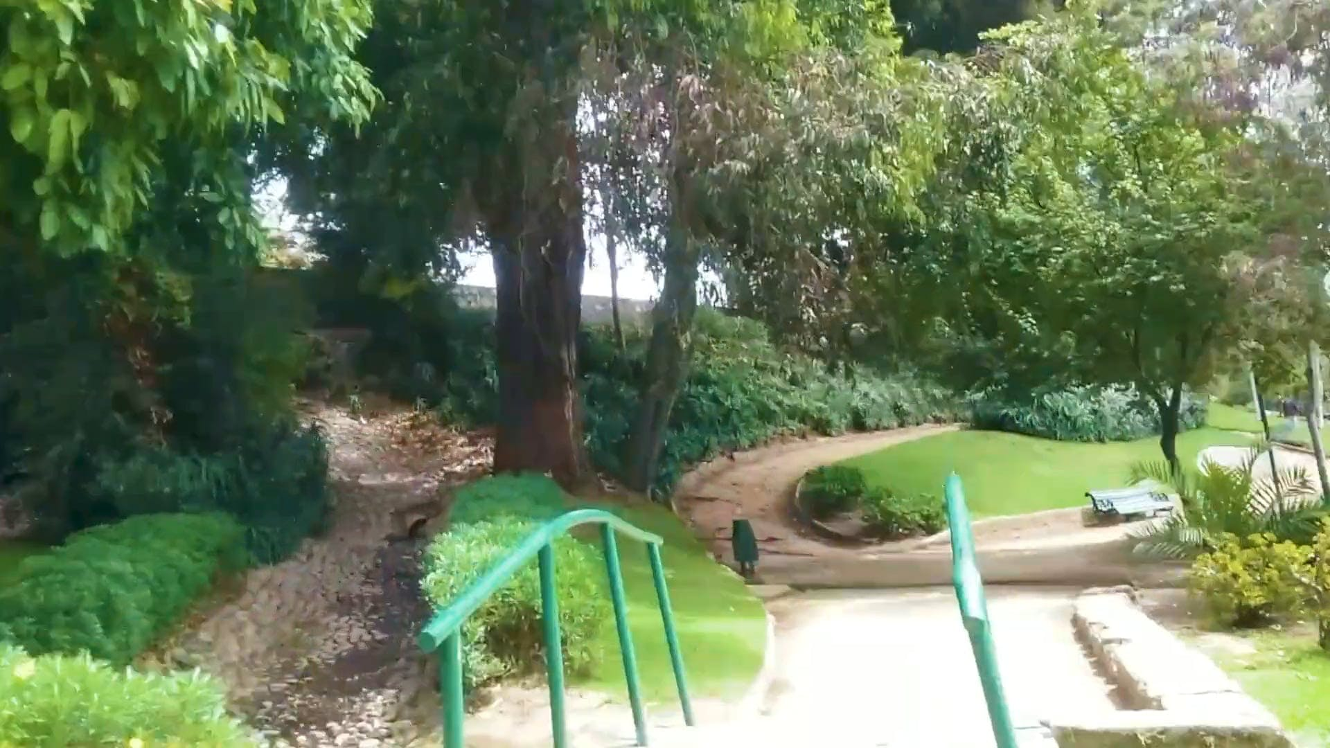 Video Of A Beautiful Park In Timelapse Mode