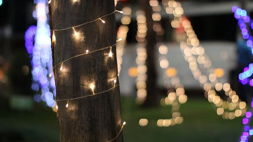 Christmas Lights Wrap Around An Electric Post