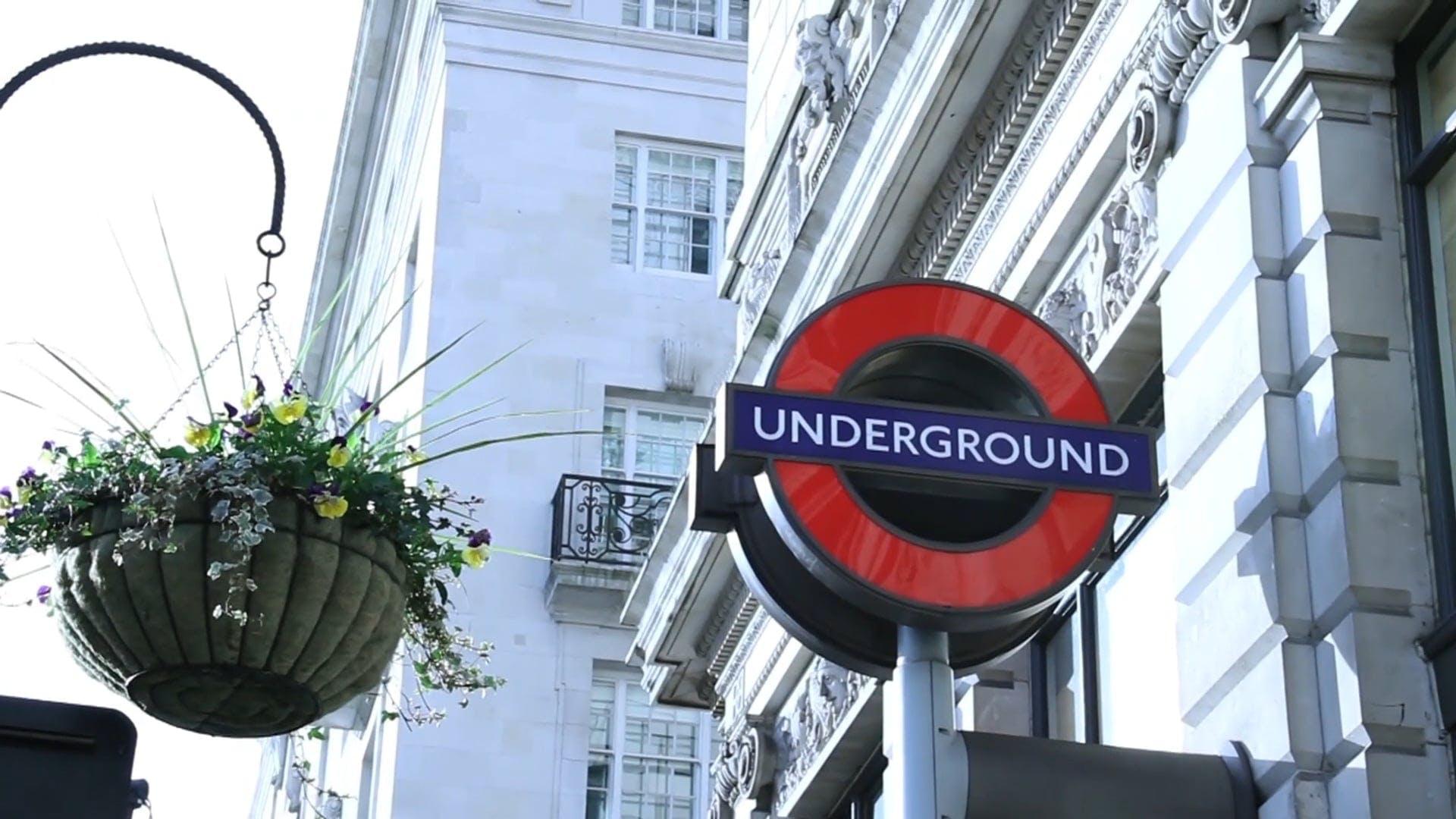 Close-Up View Of Underground Signage