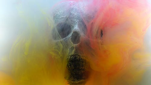 Skull With Colorful Smoke