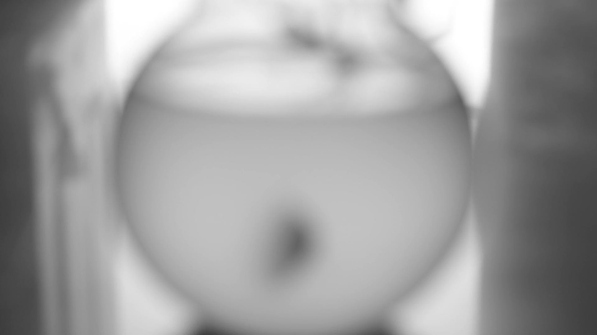 Blurred View Of A Fish In A Fishbowl