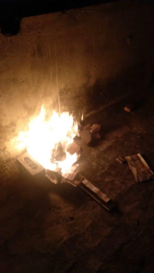 Burning Wood On The Ground