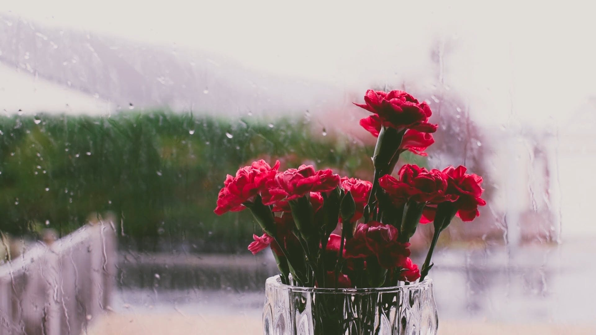 Red Flowers On A Vase With View Of A Rainy Day