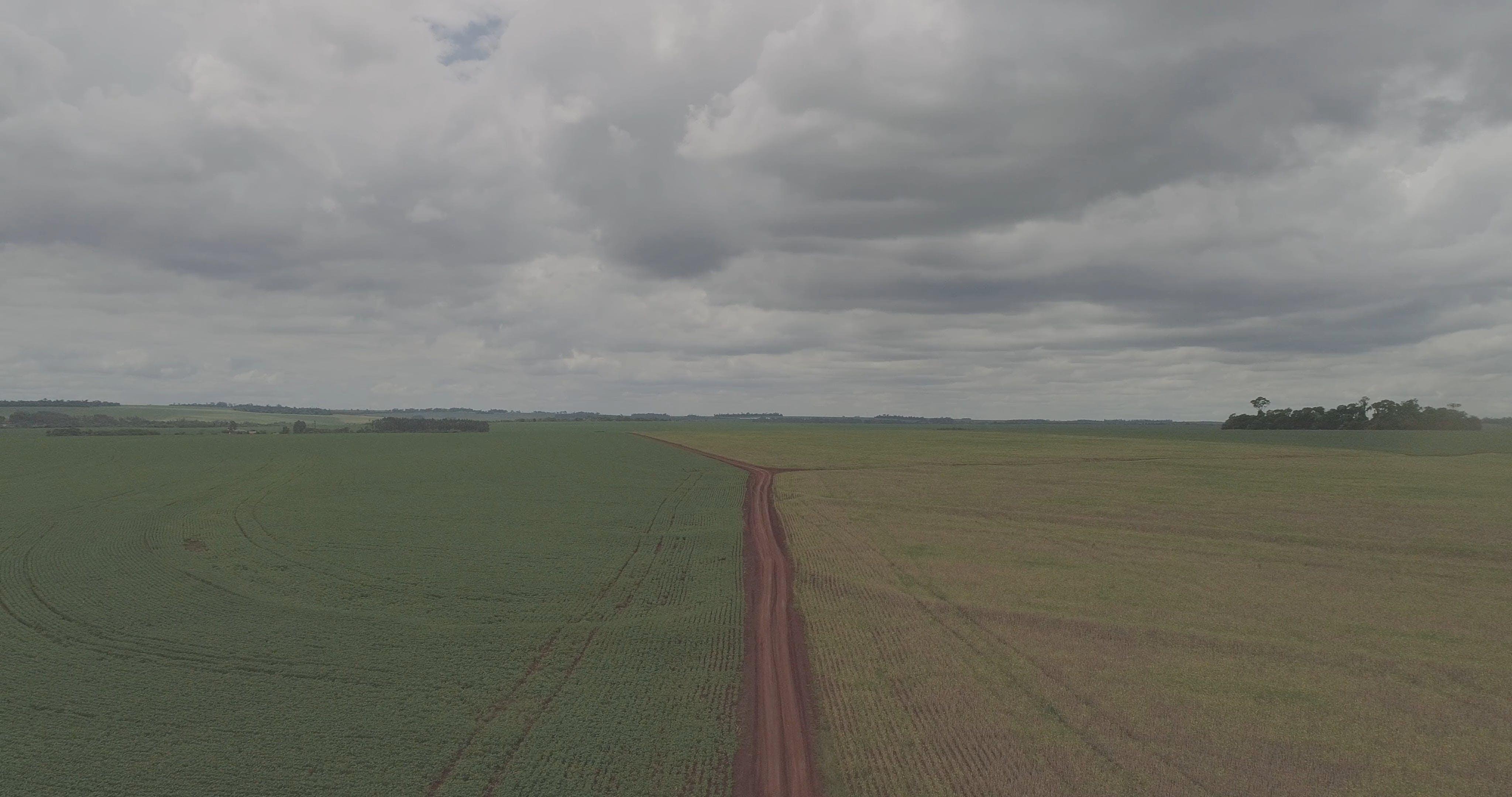 Aerial View Of A Vast Farmland