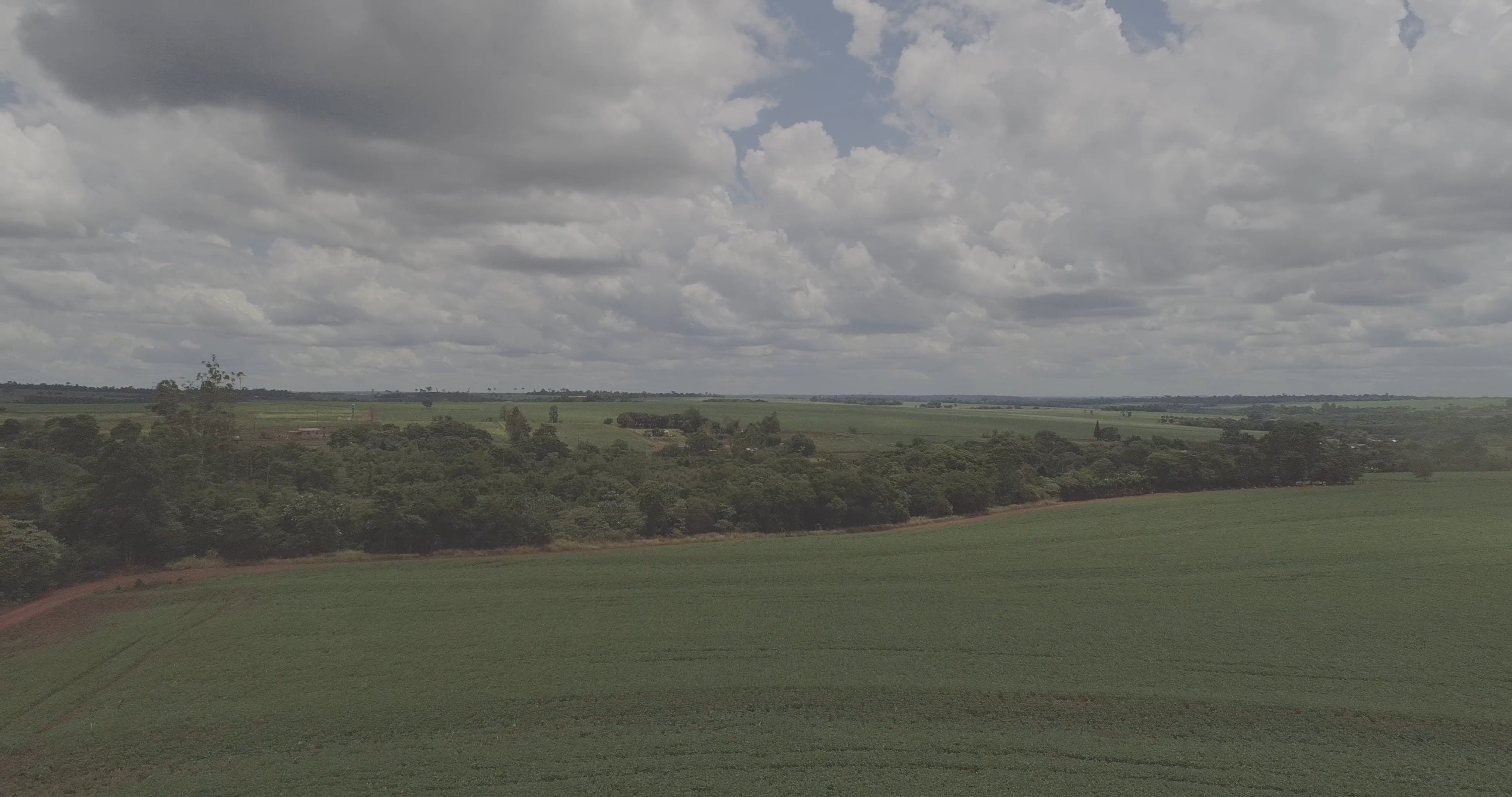 View Of A Vast Agricultural Land