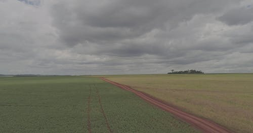 Agricultural Land Under White Clouds