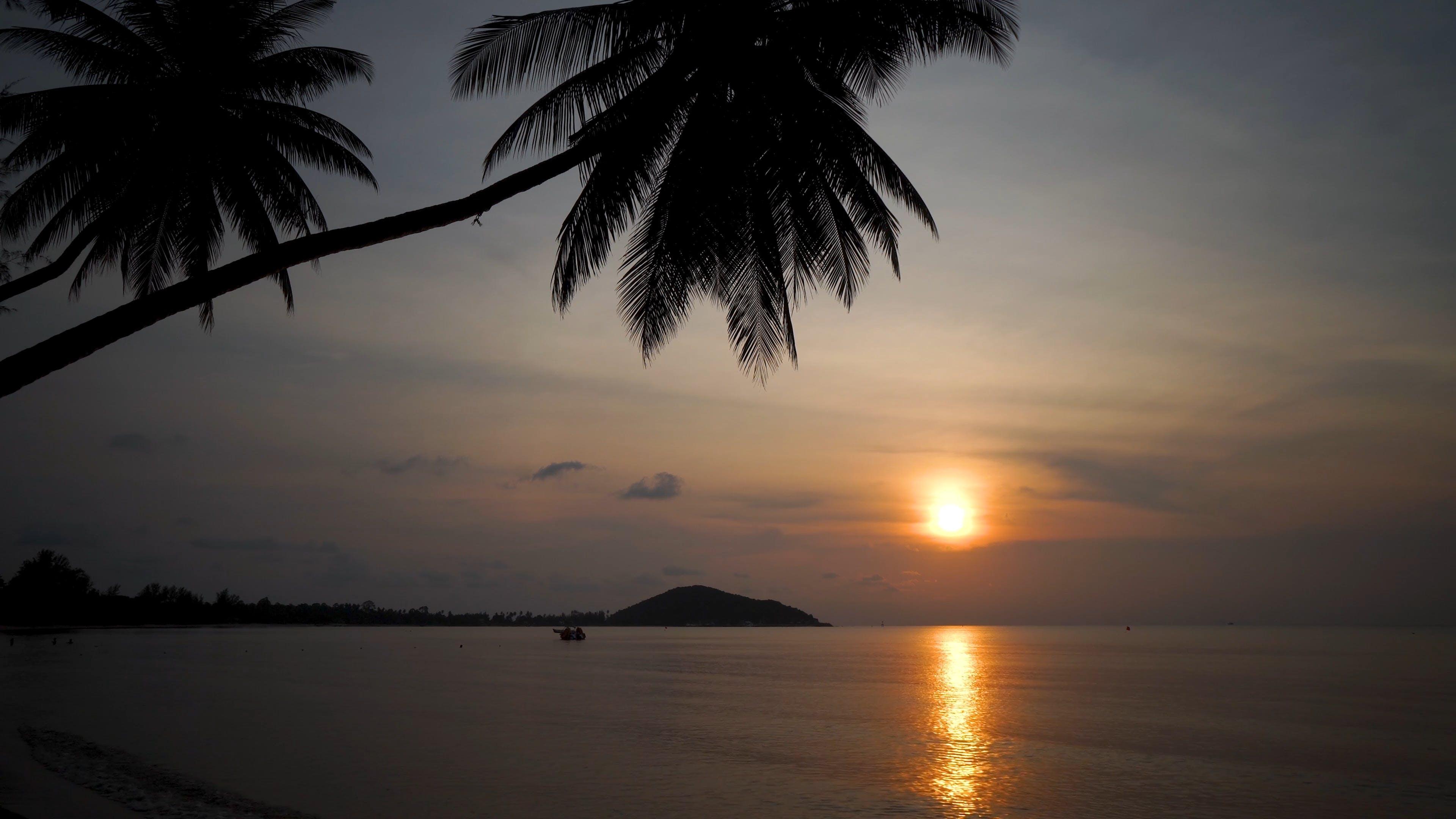View Of A Golden Sunset