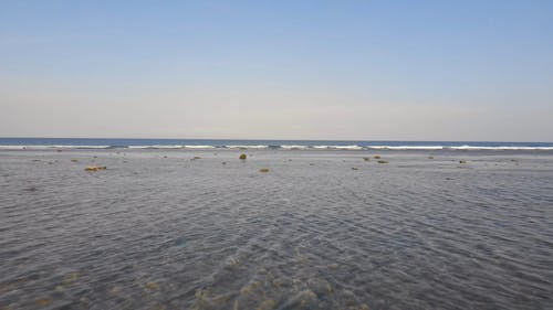 View Of The Sea At Low Tide