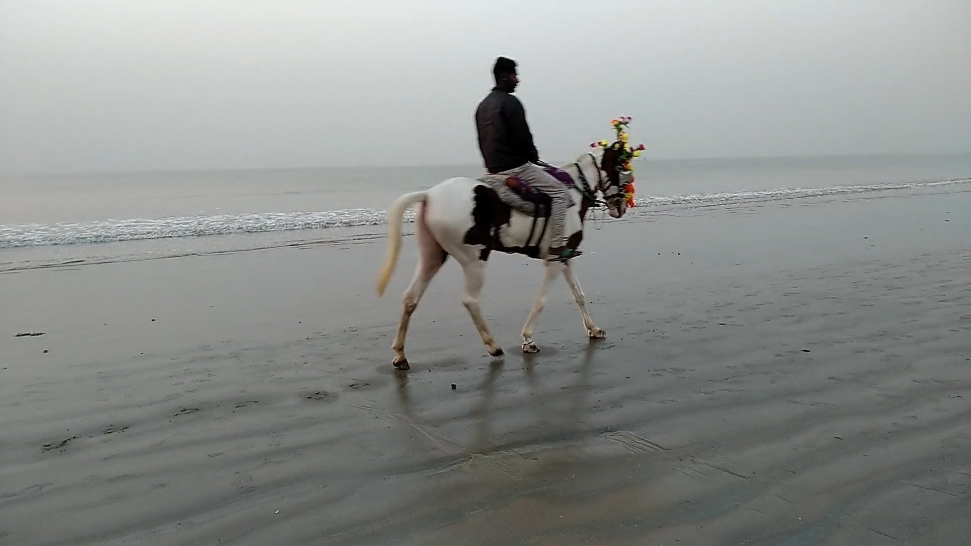 Man Riding A Horse By The Sea