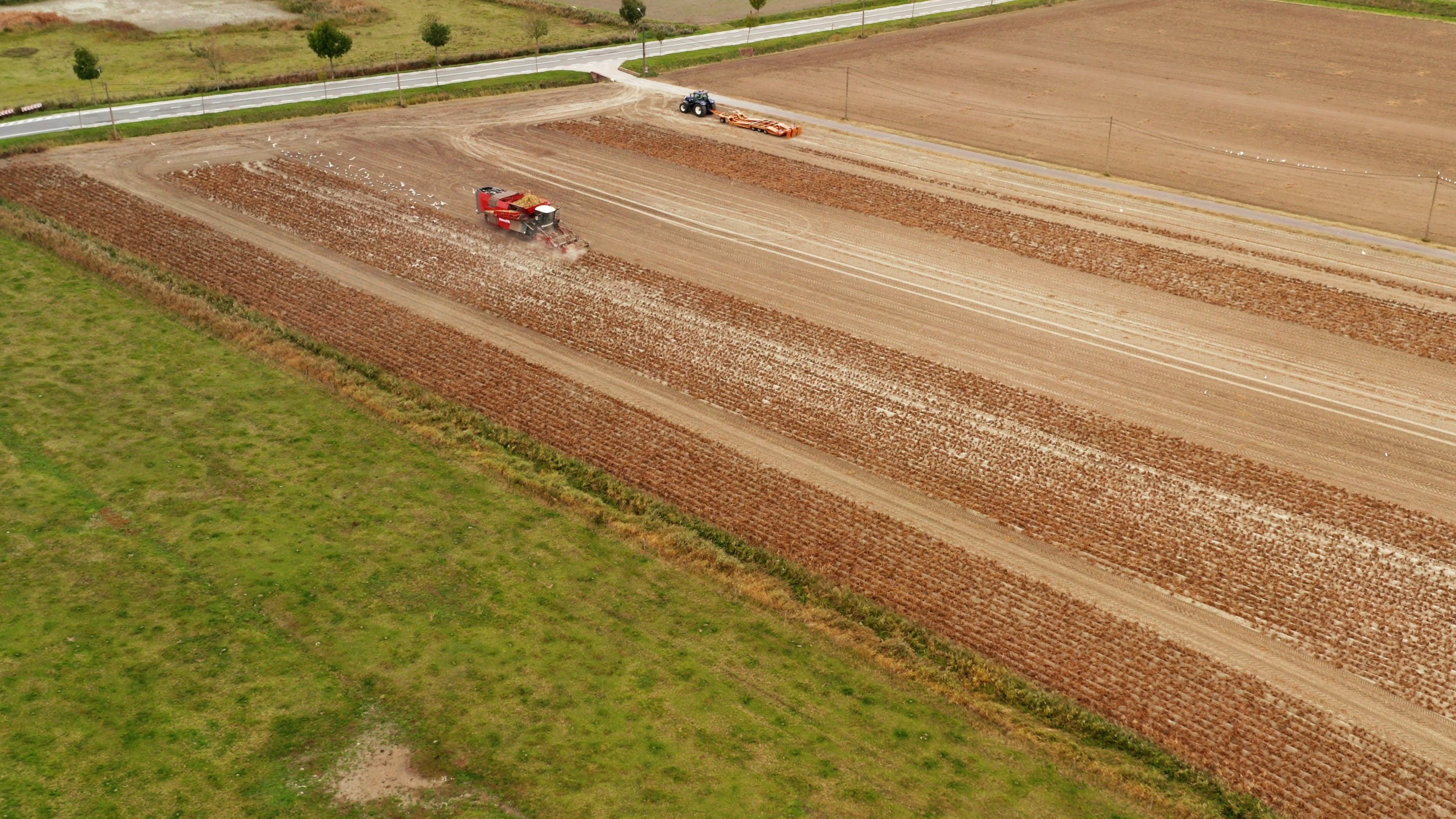 Cultivation Of Land With Tractor