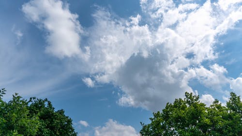 Time Lapse Footage Of Cloud Pockets Over Trees