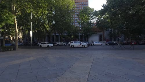 Parked Cars In Front Of A Building