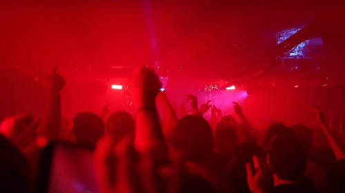 Video Of People Having Fun At Concert