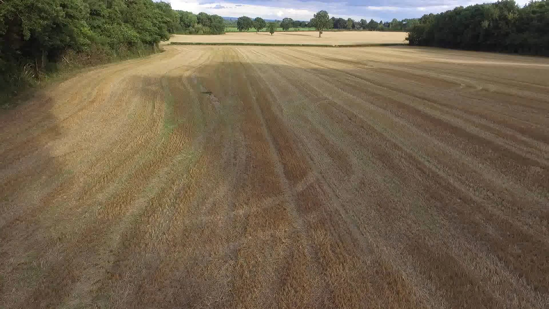 Drone View Of An Agricultural Land