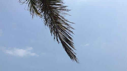 Happy Beach Resort