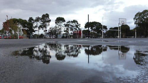 A Wet Ground With Reflection Of Trees
