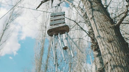 Wind Chime Hanging On A Tree