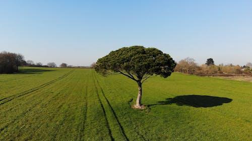 Bir Tarım Alanının Havadan Görüntüleri
