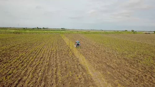 A Person Plowing Cropland Using A Tractor