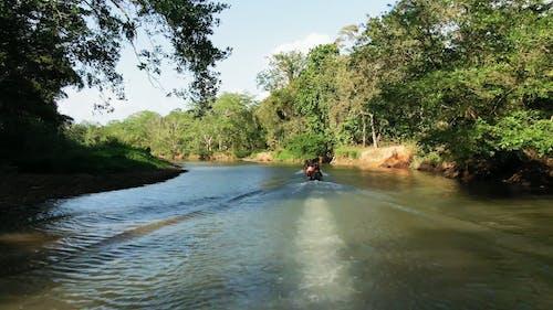 Motor Boat Speeding On A Narrow River