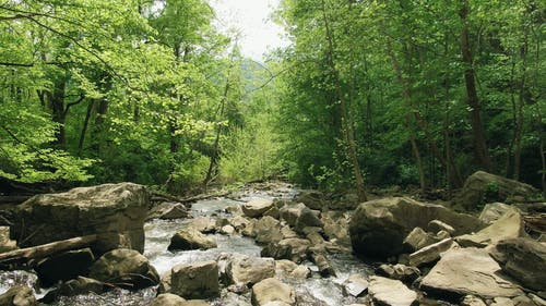 Ein Flacher Fluss, Der Durch Ein Felsenbett Strömt