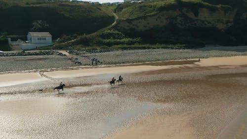 Aerial Footage Of Men Enjoying Horseback Riding Along The Seashore