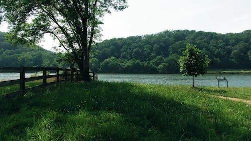 郁郁葱葱的土地包围的河的无人机画面