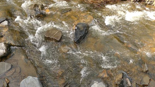 Water Streaming On Bed Of Rocks