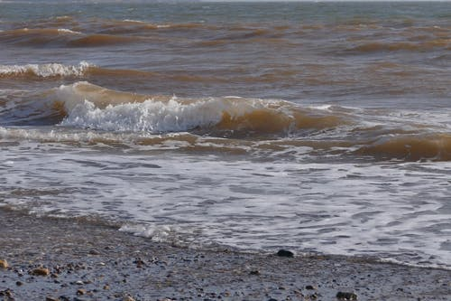 Waves Lapping On The Shore