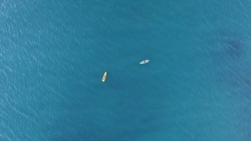 Aerial Shot Of People In The Ocean
