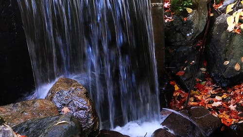 Waterfalls With Autumn Leaves