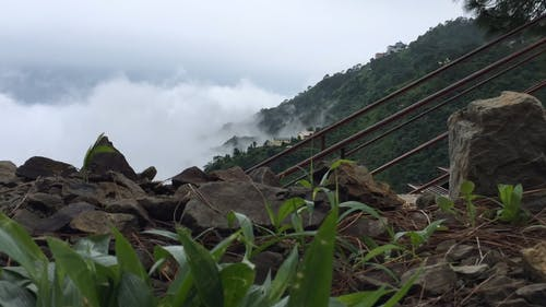 Foggy View Of Mountainside