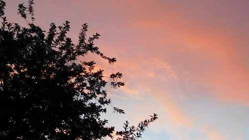Pastel Color Appearance Of A Sky