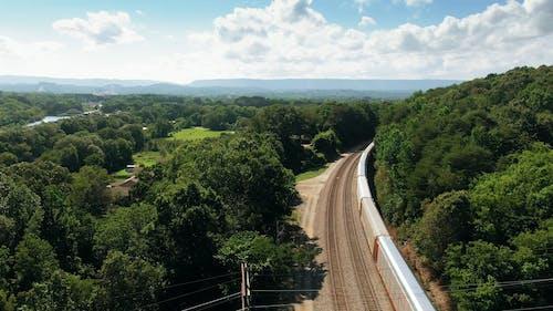 Aerial Footage Of A Train Going Through Luscious Vegetation