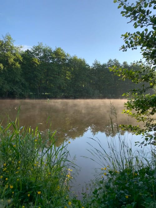 A Thin Mist Covering The Surface Of A Lake