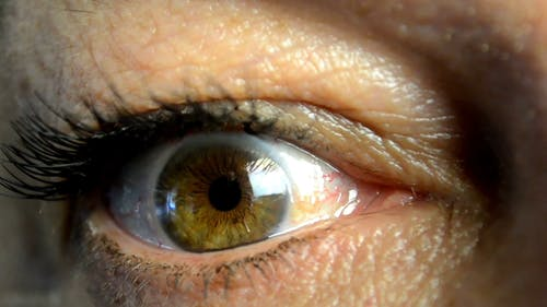 A Woman Right Eye In Focus