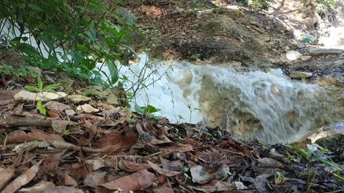 Water Streaming Down A Rocky Surface