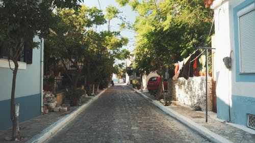 A Narrow Street Lined With Trees