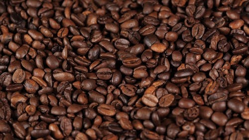 A Roasted Coffee Beans