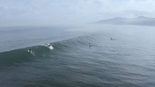 Surfers Riding The Waves On A Foggy Day