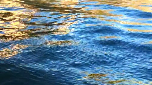 Waves On The Surface Of The Water