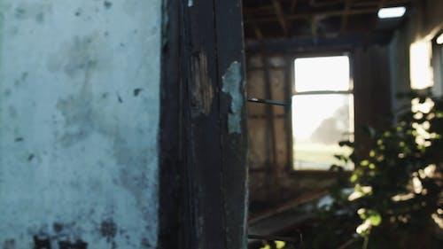 Zrujnowany, Opuszczony Dom