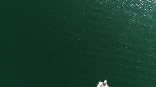 A Speed Boat Traversing The Lake