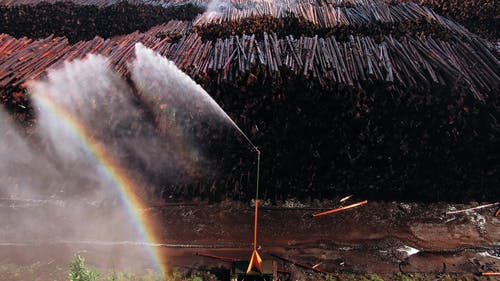 Water Sprinkler In A Lumber Yard