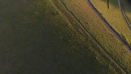 Riprese Aeree Di Colline E Montagne Ricoperte Di Erba Verde