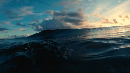 Grandi Onde In Un Oceano