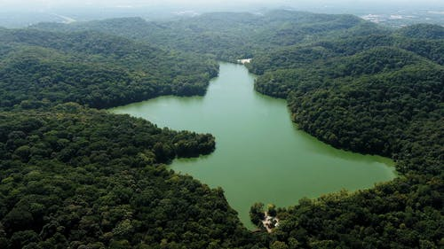 A Lake Dam On On The Valley Of A Mountain Forest