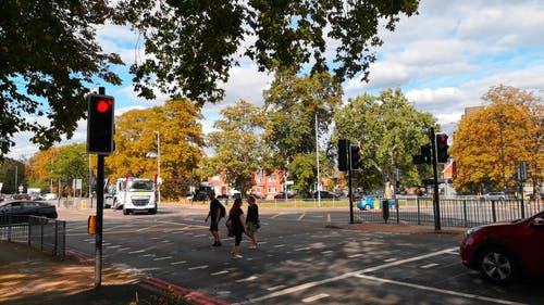 Cars Stopping At A Pedestrian Crossing